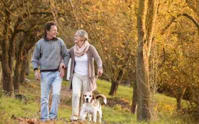 5 Best Places to Retire in Michigan 2021-2022